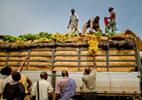Men loading bananas from a truck in South Sudan.
